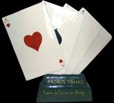 trophee bridge Probus France